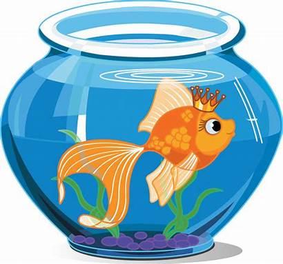 Goldfish Vector Fishbowl Fish Swimming Cartoon Bowl