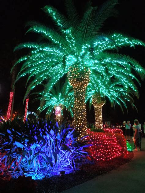 houses with christmas tree lites in palm springs sweet escapes in the gardens