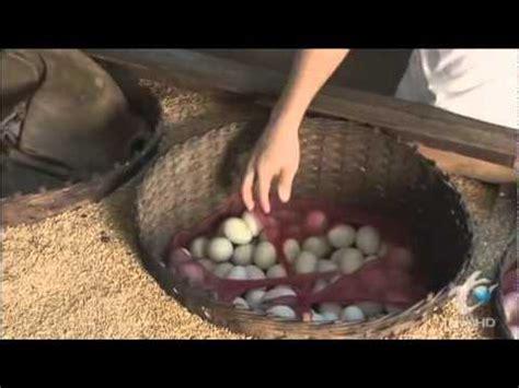Mongolian Foods 15 Doovi