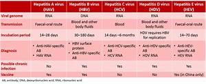 Prime Global | ... Hepatitis A Transmission