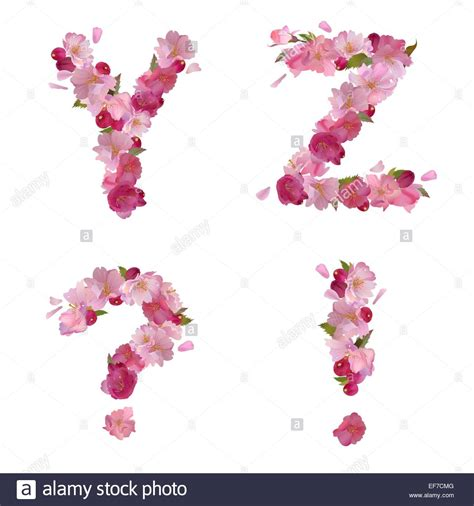 vector alphabet with gentle flowers letters vector alphabet with gentle flowers letters 15369