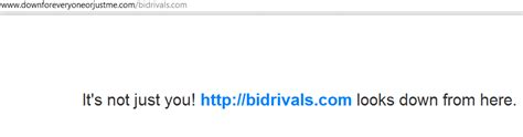 Bid Rivals Bidrivals Was Acquired By Bidson But Did They Take