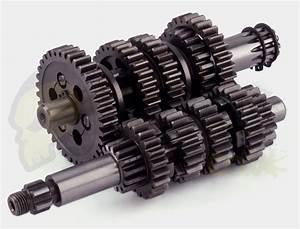 Manual Motor Minarelli Am6