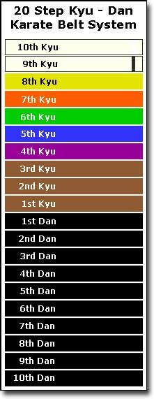 belt colors in karate how are karate belts earned and what do karate belt colors