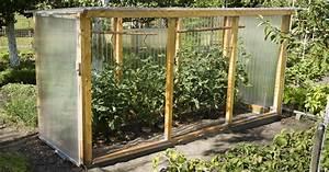 Ameisen Im Gewächshaus : tomatenhaus selber bauen tomatenhaus selber bauen unser ~ Lizthompson.info Haus und Dekorationen