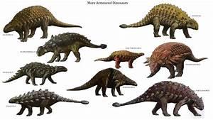 Dinosaurs for KS1 and KS2 children   Dinosaurs homework ...