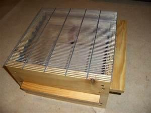 Comment Faire Une Ruche : comment fabriquer la grille a reine la ruche warr ~ Melissatoandfro.com Idées de Décoration