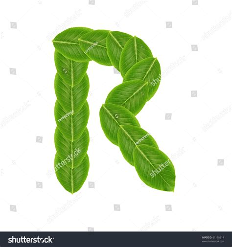 ls made from leaves letter r made from leaves stock photo 61178914 shutterstock