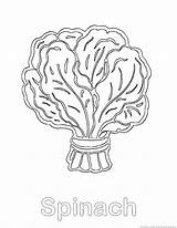 Spinach Coloring Pages Vegetable 123coloringpages sketch template