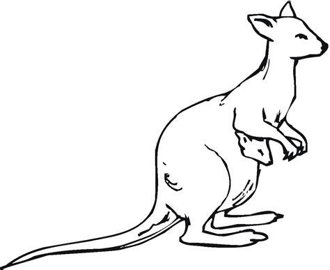 kangaroo habitat coloring page coloring pages