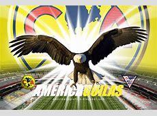 America Soccer Team Wallpaper WallpaperSafari