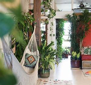 Pflanzen In Der Wohnung : indoor jungle so gesund lebst du mit pflanzen in der wohnung ~ A.2002-acura-tl-radio.info Haus und Dekorationen