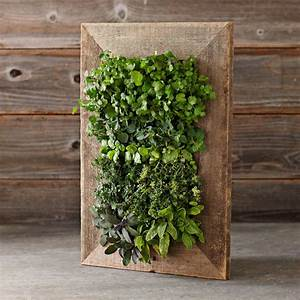 Reclaimed Barn Door Vertical Wall Planter - The Green Head
