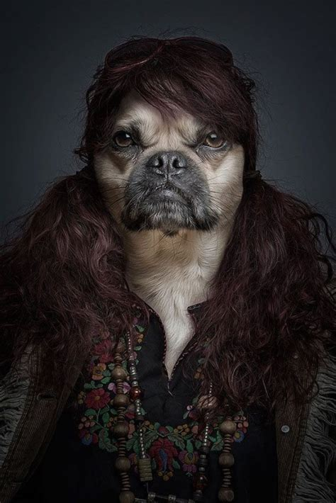 dogs dressed  humans   funcage