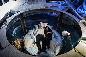 Airbnb, Aquarium, Guests, Sleep, In, 360