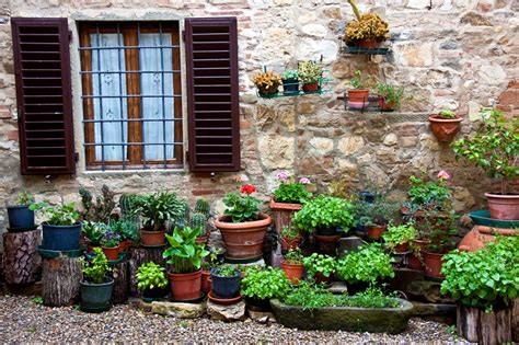 tuscan plants zenfolio jennifer lycke artist photographer and designer jennifer lycke artist and