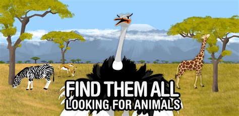 find     animals educational game