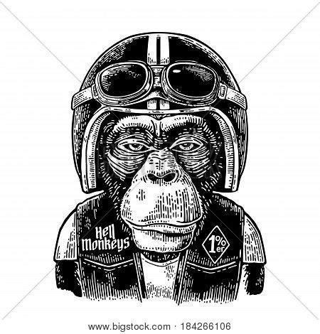monkey images illustrations vectors monkey stock