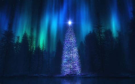 northern lights christmas tree christmas lights card and decore