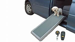 4 excellent tips to care for old injured or disabled pets With side door dog ramp