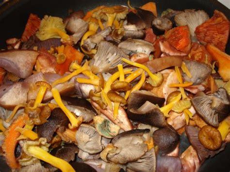 cuisiner la coulemelle la cuisine de christiane poêlée forestière