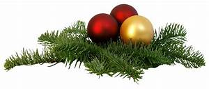 Christmas Branch PNG Transparent Image - PngPix