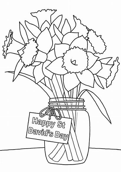 Colouring Daffodils David Davids Vase Printable Printables