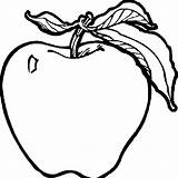 Apple Colouring Clipart Coloring Clip sketch template