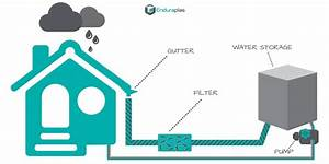 Ultimate Guide  How To Harvest Rainwater