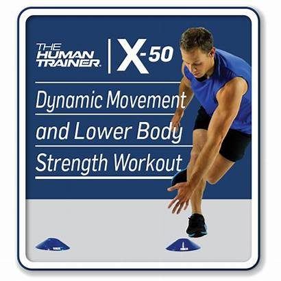 Dynamic Strength Movement Lower Workout Training Cones