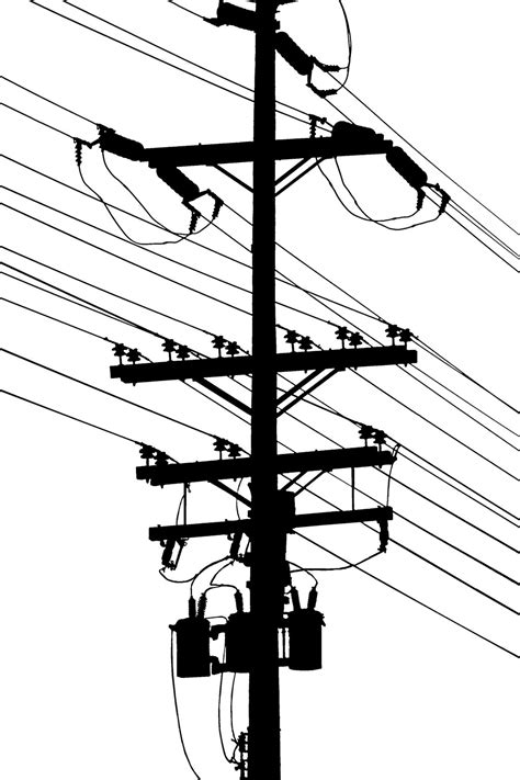 birds  power pole clipart clipground
