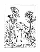 Coloring Mushroom Rocks Printable Flower Mandala Drawing Mushrooms Whimsical sketch template