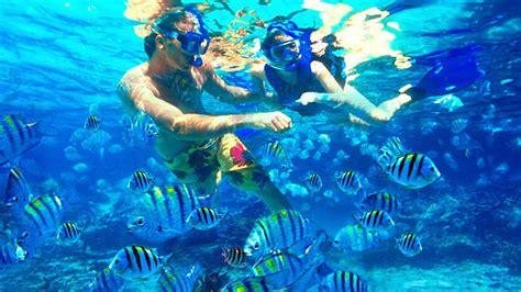 snorkeling the islands