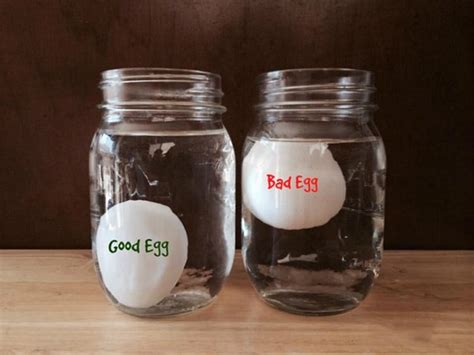 bad eggs sink or float in water 14 creative kitchen tips that will save you money food