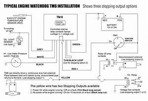 Engine Watchdog Tm6 Installation Information