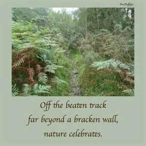 Haiku Poems About Nature