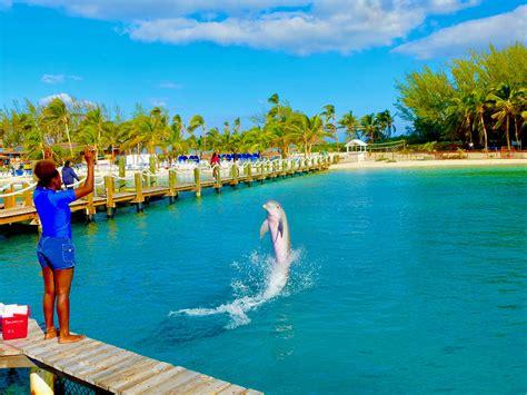 it s winter in nassau bahamas 82 degrees sunny huffpost