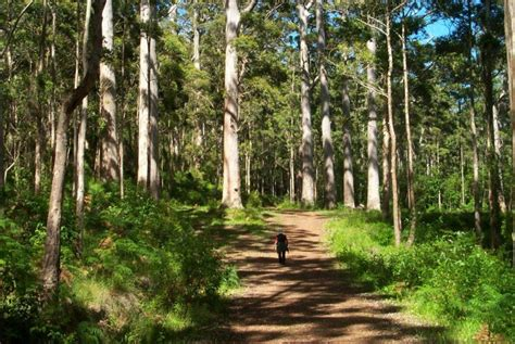 things to do in porongurup stirling ranges