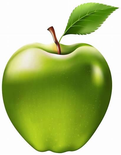 Apple Transparent Clip Clipart Fruit Yopriceville Opened