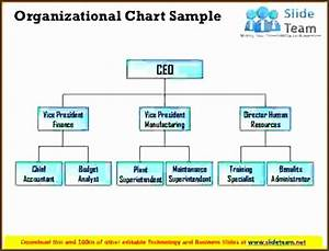 Organizational Flow Chart Template For Word 8 Organizational Chart Sample Sampletemplatess