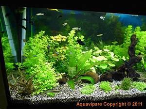 Co2 Aquarium Berechnen : co2 produire et injecter soi m me du co2 dans son aquarium ~ Themetempest.com Abrechnung