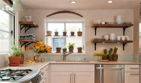 Decorating Ideas For Kitchen Plant Shelves by Best Kitchen Plants Plants For Kitchen To Decorate It