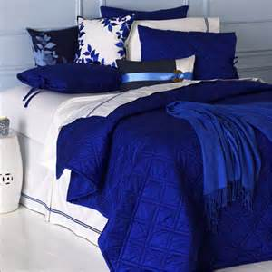royal blue bedding on pinterest cheetah bedroom decor beach theme bedding and bed comforter sets