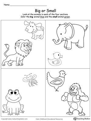 comparing animals sizes big  small printable