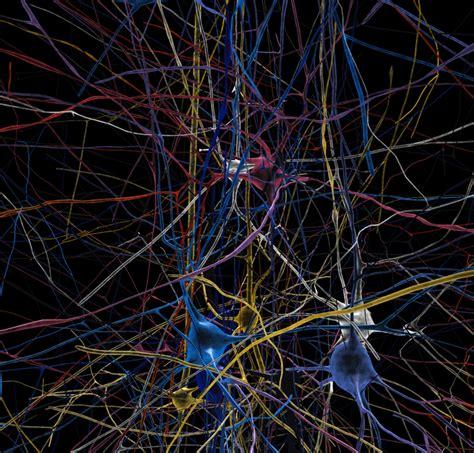 Will Artificial Intelligence Become Conscious Kurzweil