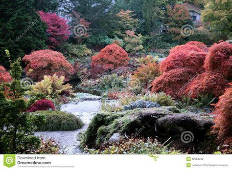 Herbstenglischgarten Stockfoto Bild Von Wasser, Formal