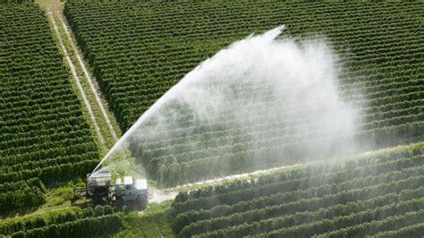 How to feed 9 billion people: the future of food and ...