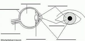 Eye Diagram Labeled