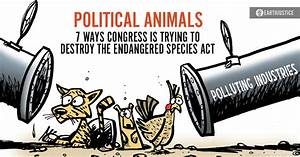 Political Animals  7 Ways Congress Is Trying To Destroy