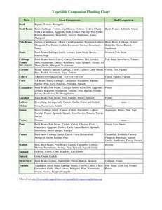 companion planting chart  vegetables bing images